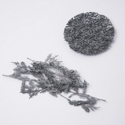Marian Hosking, Boronia-brooches, patinated silver